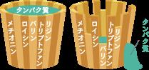 アミノ酸スコアと「桶の理論」