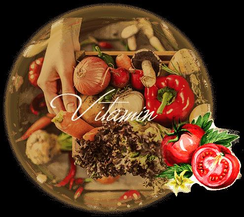 ビタミン14種類