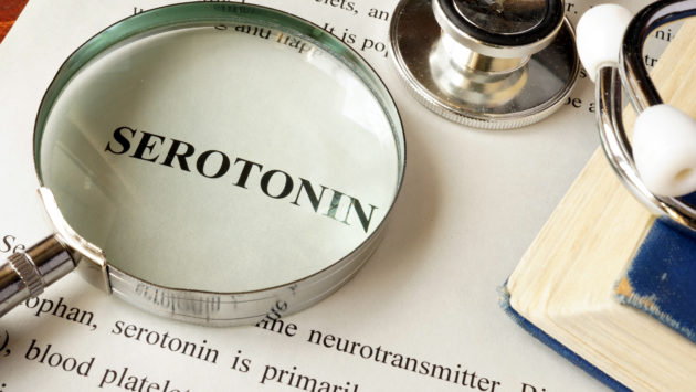 幸せ物質「セロトニン」って?